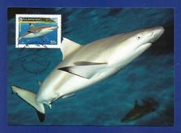 Australien / Cocos (Keeling) Islands  2005  Mi.Nr. 420 , Blacktip Reef Shark - WWF Maximum Card - 21 June 2005 - Cocos (Keeling) Islands