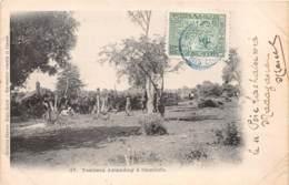 Madagascar - Fetish / 01 - Tombeau Antandroy à Itsimilofo - Madagascar