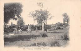 Madagascar - Fetish / 06 - Tombeau Antandroy à Itsimilofo - Madagascar