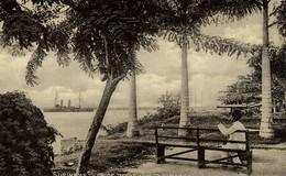 Suriname, PARAMARIBO, At The Roadstead, Steamer (1910s) Postcard - Suriname