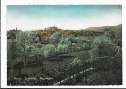 Pecetto Torinese (TO) - Viaggiata - Andere Städte