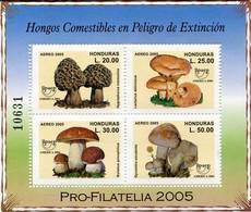 Lote H14, Honduras, 2004, HF, SS, Upaep, Hongos Comestibles En Peligro De Extincion, Edible Fungi Danger Of Extinction - Honduras