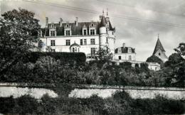 41 CHATEAUVIEUX Le Château CPSM PF Ed Aignan & Bernard - France