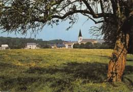 Gesves - Panorama - Gesves