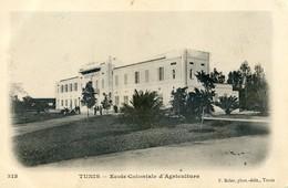 Tunisie - Tunis - Ecole Coloniale D'agriculture - Túnez