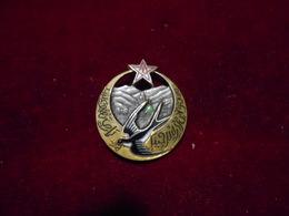 INSIGNE  1 RGT NORD AFRICAIN HIRONDELLE FAB DP - Armée De Terre
