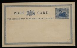 S6356 - Australien West Schwan Postkarte: Ungebraucht. - 1854-1912 Western Australia