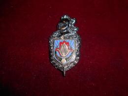INSIGNE GENDARMERIE 10 LEGION ORAN N° 10 AU DOS - Army
