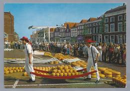 NL.- ALKMAAR. Alkmaarse Kaasmarkt.  Cheese Market. Marché Aux Fromages. - Folklore