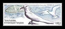 TAAF 2019 Mih. 1031 Fauna. Birds. White Tern MNH ** - Franse Zuidelijke En Antarctische Gebieden (TAAF)