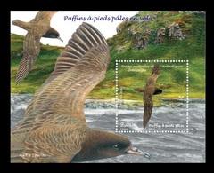TAAF 2019 Mih. 1041 (Bl.68) Fauna. Birds. Flesh-Footed Shearwaters MNH ** - Franse Zuidelijke En Antarctische Gebieden (TAAF)