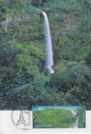 Carte  Maximum  1er  Jour   FRANCE   Emission  Commune  Avec   Le   Brésil    2008 - Maximumkarten