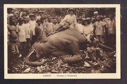 CPA AFRIQUE - GABON - Chasse à L'Eléphant - TB PLAN Chasseurs Autour De Animal Mort - Gabon