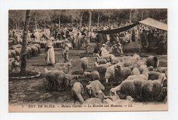 - CPA MAISON CARRÉE (Algérie) - Le Marché Aux Moutons (belle Animation) - Editions Lévy N° 7 - - Alger
