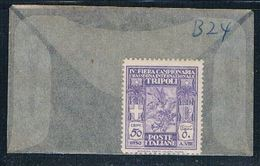 Libya B24 Unused Tobacco Plant 1930 CV 3.25 (L0421) - Libya