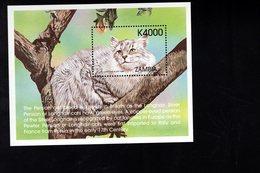 693920260 ZAMBIA POSTFRIS MINT NEVER HINGED POSTFRISCH EINWANDFREI SCOTT 802 SILVER TABBY LONGHAIR PERSIAN CAT - Zambie (1965-...)
