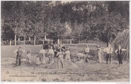 AGRICULTURE SCENES CHAMPETRES LE BATTAGE DU BLE AU ROULEAU - Agriculture