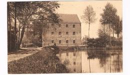 B-6969   MEERSEL-DREEF : Zicht Op De Watermolen - Hoogstraten