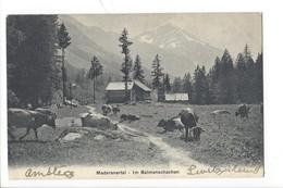 21259 - Maderanertal Im Balmenschachen - UR Uri