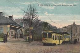 Godesberg - Station Du Tramway De Bonn - Tram - Bonn