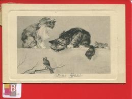 Jolie CPA Illustrateur Lehmann Chat Chaton Cat Cachette Jeu Oiseau Bonne Année - Gatti