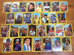 60 Cartes / Cards Monty Chewing Gum 1968 - Complete Set - Cyclists - Cyclisme - Ciclismo - Wielrennen