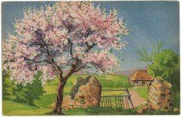 Carte Exposition Salon Peinture Tableau Art : Illustrateur Non Signé - Paysage Arbre Fleuri - Schilderijen