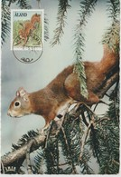 Aland Carte Maximum 1991 Animaux Ecureuil 45 - Aland