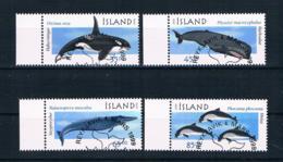Island 1999 Wale Mi.Nr. 905/08 Kpl. Satz Gestempelt - 1944-... Republic