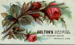 CHROMO  COLTON' SELECT FLAVORS OF CHOICEST FRUITS  PERFECTLY PURE - Trade Cards