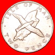 # GREAT BRITAIN (1976-1979): ISLE OF MAN ★ 2 PENCE 1977! LOW START ★ NO RESERVE! - Hong Kong
