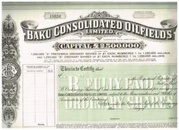 Action Ancienne Uncirculed - Baku Consolidated Oilfields Limited - Titre De 1917 - Pétrole