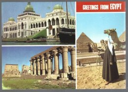 CP Greetings From Egypt, Multiviews - Autres