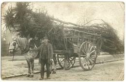 Photo-carte : Charette Transportant Des Arbres Arrachés...  Photo LAVERTON à Nanterre - Nanterre