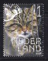 Nederland – 2 Januari 2019 – Beleef De Natuur – Zoogdieren – Wilde Kat (Felis Silvestris) – MNH - Period 2013-... (Willem-Alexander)
