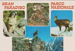Gran Paradiso - Italia