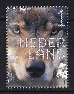 Nederland – 2 Januari 2019 – Beleef De Natuur – Zoogdieren – Wolf (Canis Lupus) – MNH - Gibier
