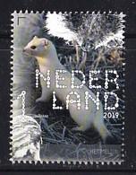 Nederland – 2 Januari 2019 – Beleef De Natuur – Zoogdieren – Hermelijn (Mustela Erminea) – MNH - Period 2013-... (Willem-Alexander)