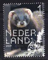 Nederland – 2 Januari 2019 – Beleef De Natuur – Zoogdieren – Bunzing (Mustela Putorius) – MNH - Period 2013-... (Willem-Alexander)