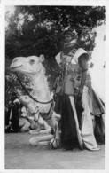 Niger - Ethnic / 03 - Partisan Méhariste - Niger