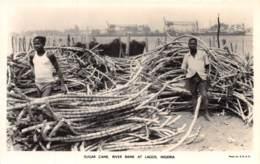 Nigeria - Topo / 33 - Lagos - Sugar Cane - Nigeria