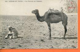 "Maroc, CPA  1918 ,  "" La Prière Au Désert ""Morocco;Marruecos - Marokko (1891-1956)"