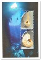 Niuafo'ou 2018, Postfris MNH, Shells - Postzegels