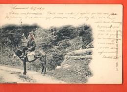 VAD-17 Paysanne De Champéry Sur Son Mulet, Boille à Lait. Foulards Rouges.Précurseur Circulé 1899 Jullien 1226 - VS Valais