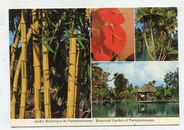 MAURITIUS  -  AK 341739 Botanical Gardens At Pamplemousses - Maurice