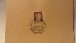 DR: Blatt Mit 3 Pf Adolf Hitler SSt. FELLBACH (Württ) Wein Und Gartenbau Vom 25.11.42 -ohne Anschrift Und Text - Deutschland
