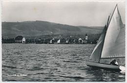 1951 Steinach Bei Arbon - SG St. Gall