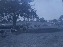 Importante Ancienne Photographie 40 X 30 Cm Champ De Courses Trotteurs à Situer Bretagne ?? Hippisme Chevaux - Sports