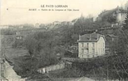 54 BRIEY Vallée De La Sangsue Et Ville Haute CPA - Briey