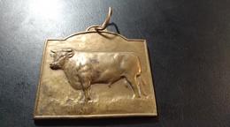 Médaille Concours Général D'élevage. Namur - Belgium